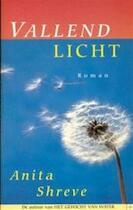 Vallend licht - Anita Shreve (ISBN 9789041008473)