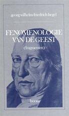 Fenomenologie van de geest - Georg Wilhelm Friedrich Hegel (ISBN 9789060094747)