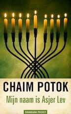 Mijn naam is Asjer Lev - Chaim Potok (ISBN 9789460050121)