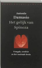 Het gelijk van Spinoza - Antonio Damasio (ISBN 9789028420021)