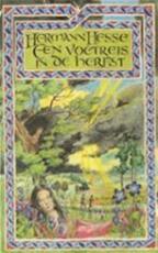 Voetreis in de herfst - Herman Hesse (ISBN 9789023411260)