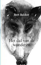 Vallee des Merveilles - Bert Bakker (ISBN 9789090164823)