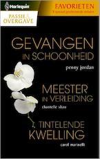 Gevangen in schoonheid/ Meester in verleiding/ Tintelende kwelling - Penny Jordan (ISBN 9789461995063)
