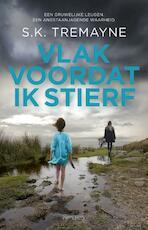 Vlak voordat ik stierf - S.K. Tremayne (ISBN 9789044635485)