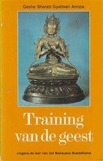 Training van de geest - Sherab Gyaltsen Amipa, Sherab Gyaltsen Amipa (geshe) (ISBN 9789020240696)