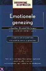 Emotionele genezing - Daniel Goleman, Dalai Lama, Lisa Scargo, Studio Imago (ISBN 9789038906966)
