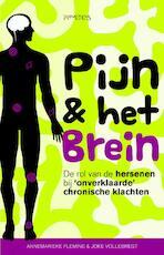 Pijn & het brein - Annemarieke Fleming, Joke Vollebregt (ISBN 9789035144279)
