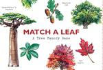 Match a Leaf A Tree Memory Game:A Tree Memory Game (ISBN 9781786272270)