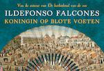 Koningin op blote voeten - Ildefonso Falcones (ISBN 9789049806064)
