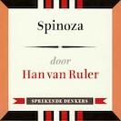 Spinoza - Han van Ruler (ISBN 9789491224294)
