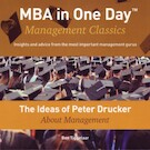 The Ideas of Peter Drucker About Management - Ben Tiggelaar (ISBN 9789079445288)