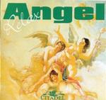 Angel relax - J.C. van der Heide, Jan C. van der Heide, Joke Hogendoorn, Joke Hogendoorn (ISBN 9789065860118)