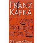 Hochzeitsvorbereitungen auf dem Lande - Franz Kafka