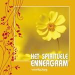 Het spirituele Enneagram - Willem Jan van de Wetering (ISBN 9789055992867)