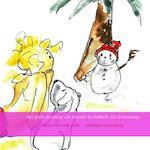 Het grote avontuur van Maudje en Bubbels - auteur Paul Dunki Jacobs tekeningen Bert Hoekstra (ISBN 9789402107142)