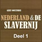Nederland & de slavernij - deel 1: 250 jaar Nederlandse Slavernij - Gert Oostindie (ISBN 9789085715344)