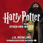 Harry Potter en Steen der Wijzen - J.K. Rowling (ISBN 9781781108031)