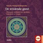 De verlichte geest - Tenzin Wangyal (ISBN 9789056703097)
