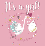 It's a girl - Gerd De Ley (ISBN 9789463540599)