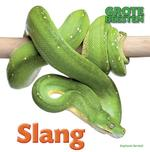 Slang - Stephanie Turnbull (ISBN 9789461759221)