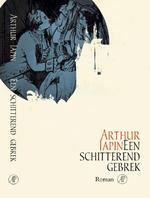 Een schitterend gebrek - Arthur Japin (ISBN 9789029523455)