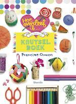Hoe overleef ik... doe-het-zelf knutselboek - Francine Oomen