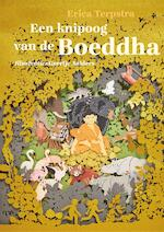 Een knipoog van de Boeddha - Erica Terpstra (ISBN 9789025770600)