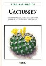 Cactussen - Rudolf Slaba, Klaske Kamstra, Textcase (ISBN 9789036609517)