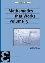 Mathematics that Works - Maarten de Gee (ISBN 9789050411691)