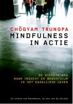 Mindfulness in actie - Chögyam Trungpa (ISBN 9789076681252)