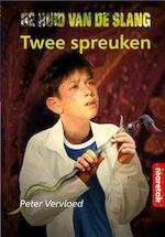 De twee spreuken - Peter Vervloed (ISBN 9789043704700)