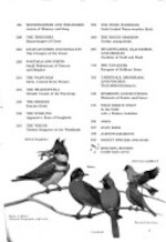 Song and garden birds of North America - Alexander Wetmore, Arthur Augustus Allen, National Geographic Society (U.S.)