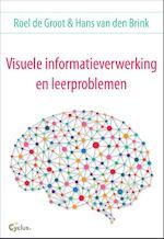 Visuele informatieverwerking en leerproblemen - Roel de Groot, Hans van den Brink (ISBN 9789085750598)