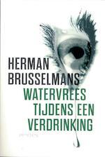 Watervrees tijdens een verdrinking - Herman Brusselmans