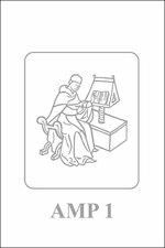 Quaestiones de ente - Petrus Thomae (ISBN 9789461662620)
