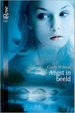 Angst in beeld - Gayle Wilson (ISBN 9789461993564)