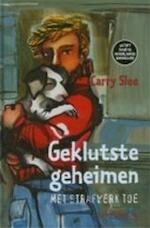 Geklutste geheimen met strafwerk toe - Carry Slee, Helen van Vliet (ISBN 9789064940361)