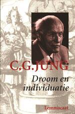 Verzameld werk / 5 droom en individuatie - C.G. Jung, Pety de Vries-Ek (ISBN 9789060699751)