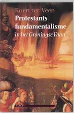 Protestants fundamentalisme in het Groningse Faan - Koert ter Veen (ISBN 9789059110823)