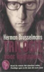 Trilogie voor beginners - Herman Brusselmans (ISBN 9789057135491)