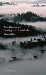 De elf grote Upanishaden - Douwe Tiemersma (ISBN 9789077194010)