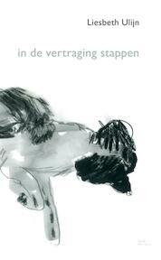in de vertraging stappen - Liesbeth Ulijn (ISBN 9789492411129)