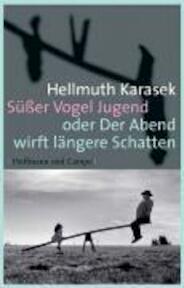 Süßer Vogel Jugend oder Der Abend wirft längere Schatten - Hellmuth Karasek (ISBN 9783455400168)