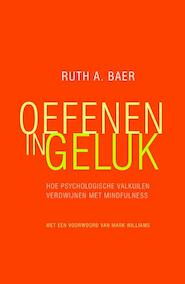 Oefenen in geluk - Ruth A. Baer, Ruth Baer (ISBN 9789057124129)