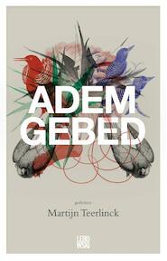 Ademgebed - Martijn Teerlinck (ISBN 9789048820672)