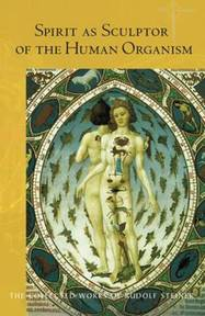 Spirit as Sculptor of the Human Organism - Rudolf Steiner (ISBN 9781855844087)