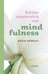 Kleine momenten van mindfulness - David Dewulf (ISBN 9789020942101)
