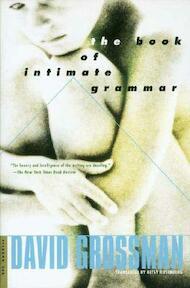 The Book of Intimate Grammar - David Grossman, Betsy Rosenberg (ISBN 9780312420956)
