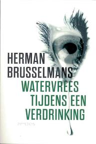 Watervrees tijdens een verdrinking - Herman Brusselmans (ISBN 9789044620641)