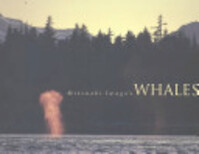 Mitsuaki Iwago's Whales - Mitsuaki Iwago (ISBN 9780811805575)